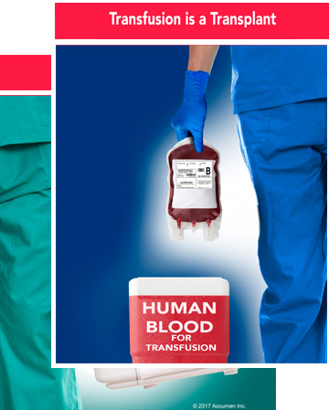 Image for Transfusion is a Transplant Poster